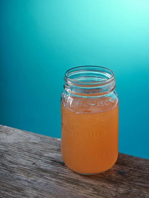 Mountain_Culture_Kombucha_Appalachian_Harvest